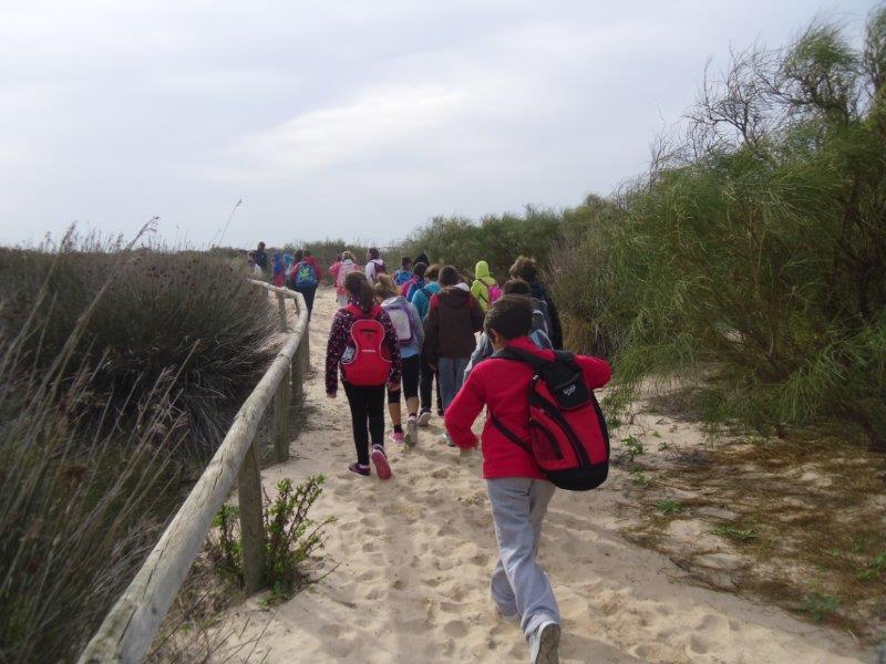 Punta Boquerón